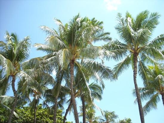 2015年8月ハワイの空